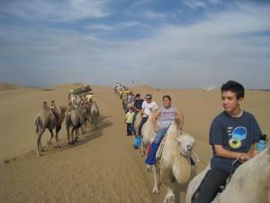 内蒙骑骆驼
